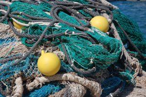 econyl fishing nets carpet avonvale